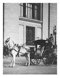 Horse and Carriage in Front of the Farmers and Mechanics Building